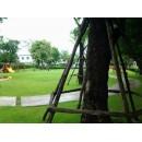 รับจัดสวน รับจัดสวน ทุก style tropical modern content  รับตัดต้นไม้ ขายต้นไม้   ทุกชนิด จำหน่ายหญ้าทุกชนิด คุณภาพดี ราคาถูก บริการรถเครน รถบ