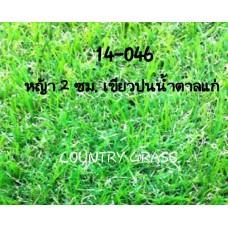 หญ้าเทียม 2 ซม. เส้นเล็ก โทนเขียวน้ำตาล
