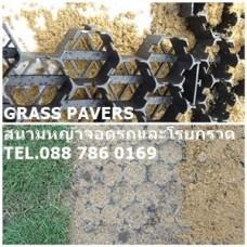 Grass Pavers ปลูกหญ้าและโรยกรวดสำหรับจอดรถ